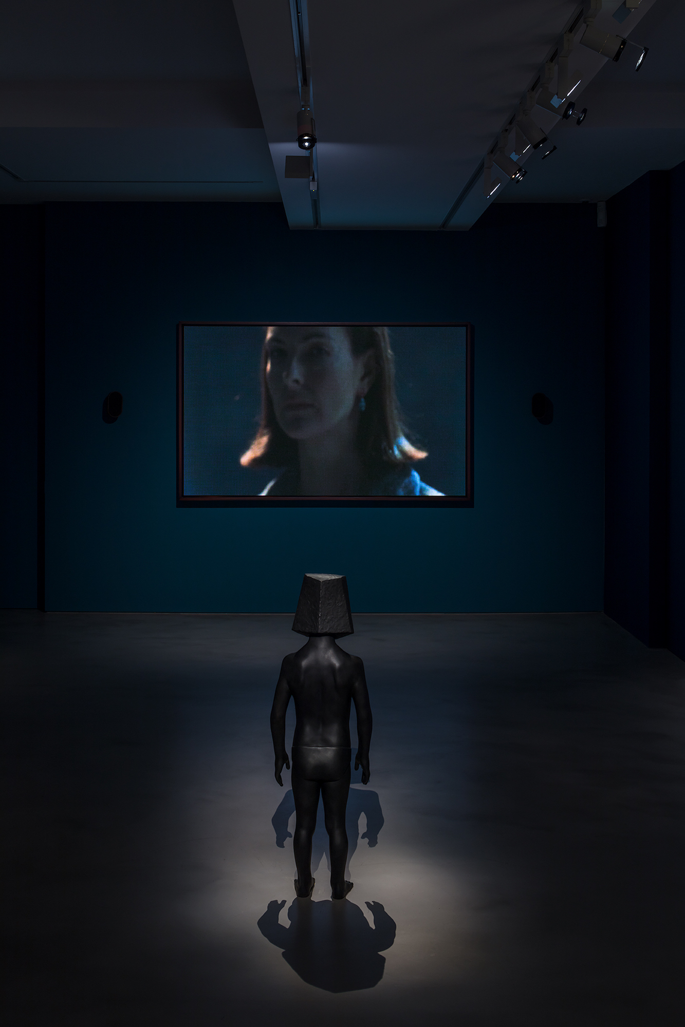 Laurent Grasso, The Panoptes Project. At Olivier Malingue, London. Photo, Marcus Peel 2