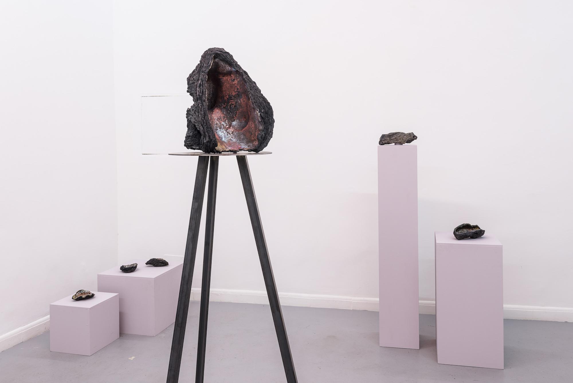 Cleo Fariselli, Dy Yiayi, Exhibition view. Operativa, Rome. Photo Sebastiano Luciano. 3b